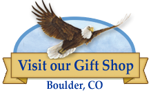 Free Production Tours & Gift Shop